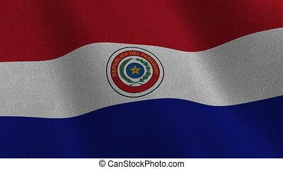 drapeau paraguay, -, seamless, boucle