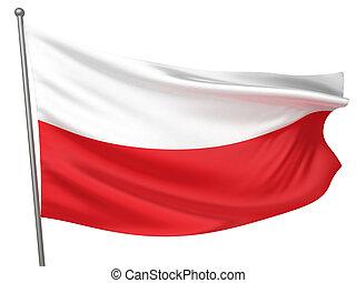 drapeau pologne, national