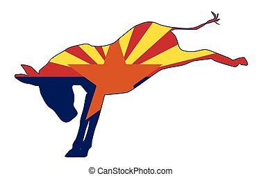 drapeau, républicain, âne, arizona