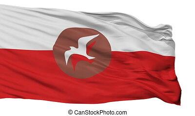 drapeau, seamless, isolé, blanc, osho, boucle