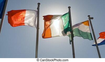 drapeaux, lent, battement des gouvernes, vent, mouvement, coloré, super, concept, -, diplomatie