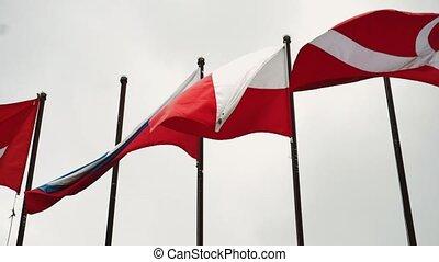 drapeaux, polonais