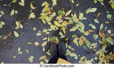 draufsicht, von, beine, stehen, in, pfütze, unter, gelb...