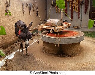 Draught donkey powering millstone - Draught or draft donkey...
