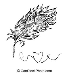 Drawing a bird feather line vector