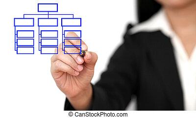 drawing business organization chart - Asian business woman...