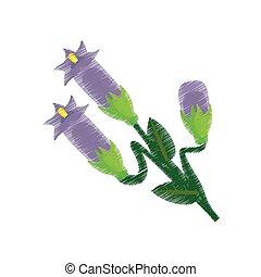 drawing crocus flower ornament