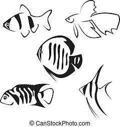 drawing., fish., linha, aquário