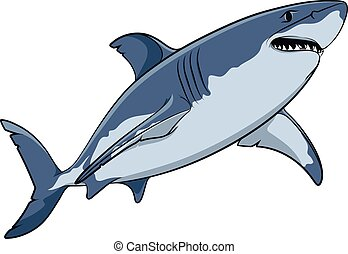 Drawing of a great white shark