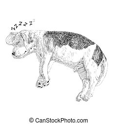 Drawing of adorable beagle sleeping on white background