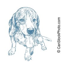 Drawing of adorable beagle, sticking out tongue