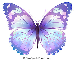 butterfly - drawing of beautiful color butterfly in a white ...