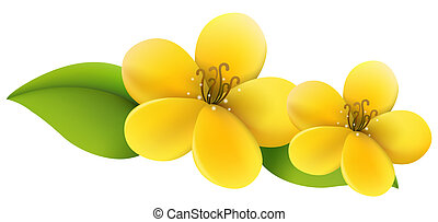 Yellow flower stock illustration images 93004 yellow flower yellow flower drawing of beautiful yellow flower in a mightylinksfo