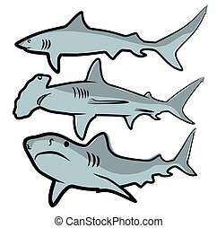 Drawing of big sharks.