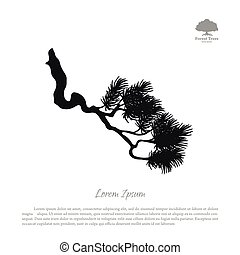 Drawing of branches of old pine tree. Black silhouette on a white background
