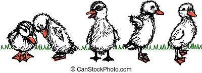 drawing of ducklings frame