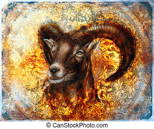 Drawing of male wild sheep with mighty horns on flower background