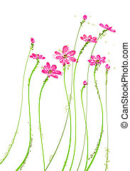 pink wildflower - drawing of pink wildflower in a white...