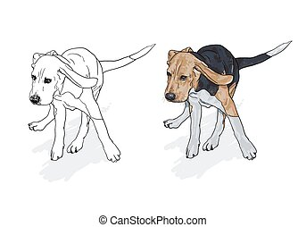 Drawing of running beagle with shadow on white