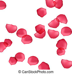 drawing of some red petals in a white background
