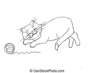 drawing of the cat on white background