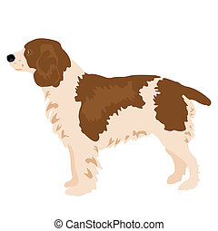 Drawing of the dog on white