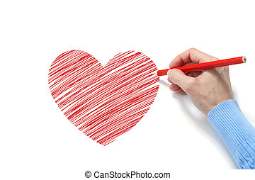 Drawing of the heart