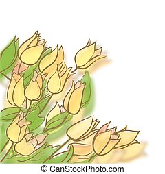 Drawing of tulips. Vector illustration