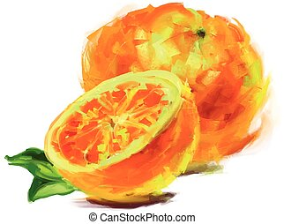 drawing orange with a slice