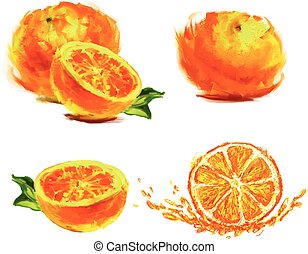 drawing slice of orange