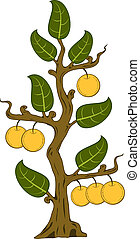 drawn apples with leaves on the tree