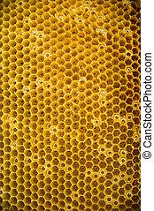 Drawn honey comb
