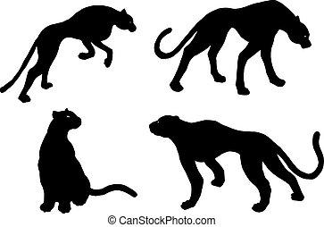 Drawn jaguar, leopard, wild cat, panther silhouettes