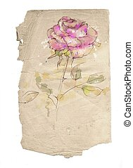 Drawn with hands on paper a rose in ancient style