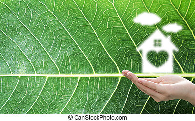Dream house concept of home sweet home with cloud over woman hand on green leaf texture background