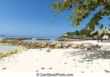 Dream seascape view with a big stones and palmtree, Seychelles, La Digue island