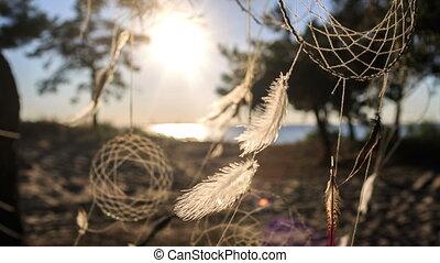 dreamcathers, drzewo, wisząc