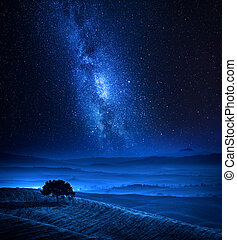 Dreamland with one tree on field and milky way