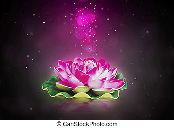 Dreamy lotus flower - Dreamy magic lotus flower with sparkle...