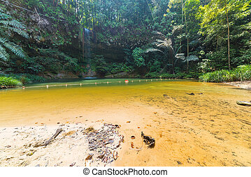 Dreamy multicolored natural pool hidden in the dense and umid rainforest of Lambir Hills National Park, Borneo, Malaysia.