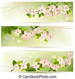 drei, fruehjahr, banner, mit, blühen, baum, brunch, mit, fruehjahr, flowers., vektor, illustration.