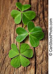 drei, glücklich, irisch, kleeblatt, auf, a, weinlese, holz, hintergrund