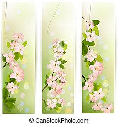 drei, natur, banner, mit, blühen, baum, brunch, mit, frühjahrsblumen, ., vektor, illustration.