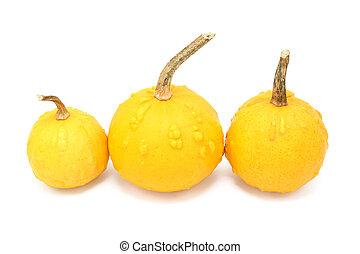 drei, runder , orange, dekorativ, kürbise, mit, warty,...