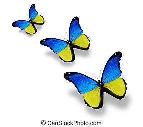 drei, ukrainische markierungsfahne, vlinders, freigestellt, weiß