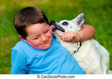 dreng, hans, er, hund, yndling, slikk, glade