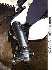 dressage, cavaliere, cavallo