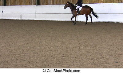 Dressage competitor performing - Woman rider riding a horse...
