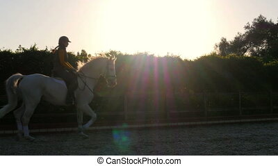 """""""dressage, horse show rider girl at sunset"""""""
