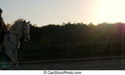 """dressage, horse show rider girl at sunset"""